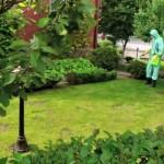 Обработка участка от сорняков, насекомых, комаров, ос, клещей в Самаре и Тольятти