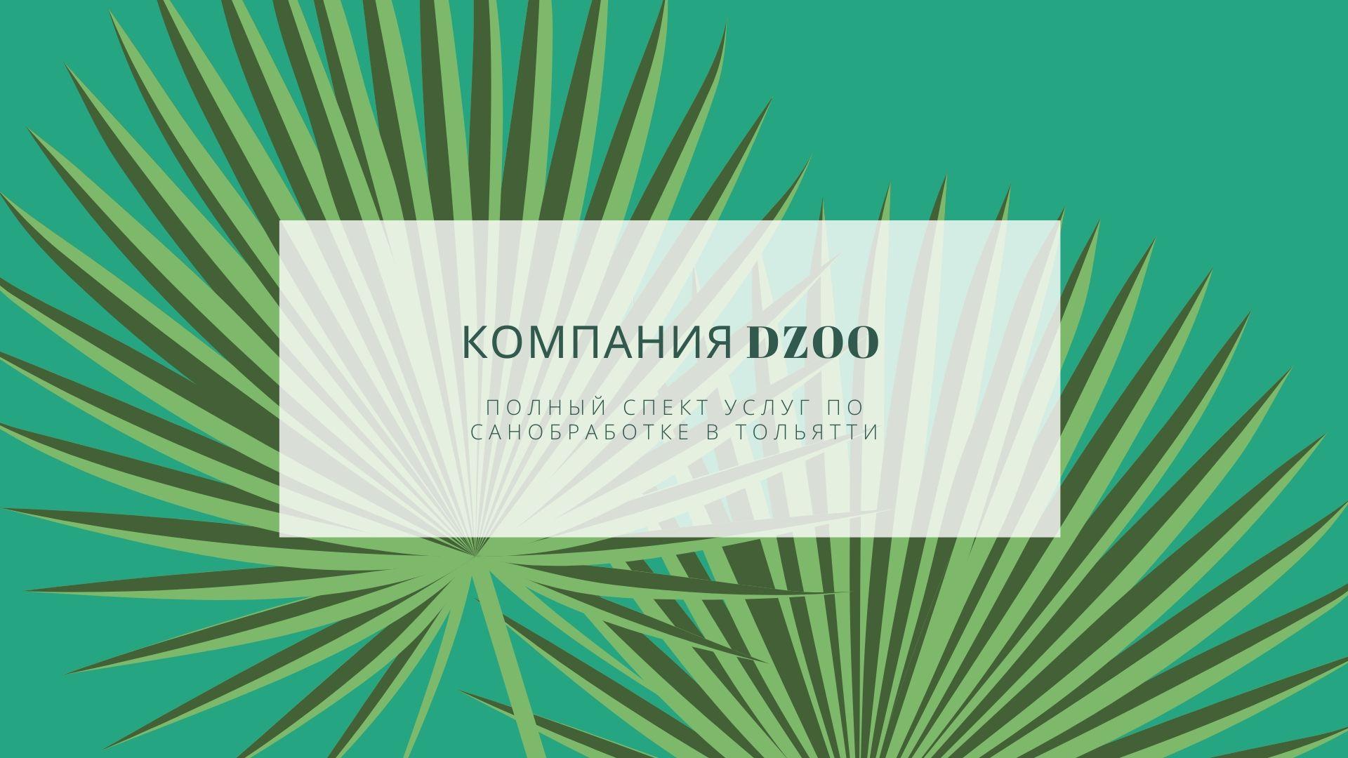 Компания DZOO